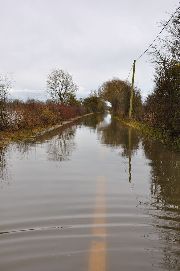 Road out of Muchelney