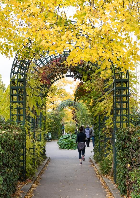 Promenade plante 2