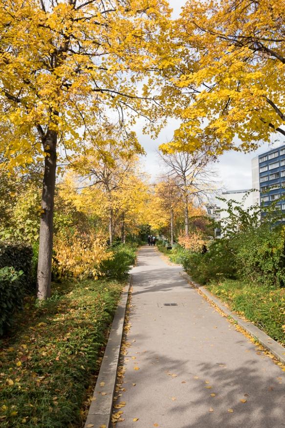 Promenade plante 6