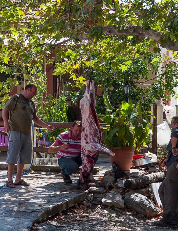 Wild boar butcher